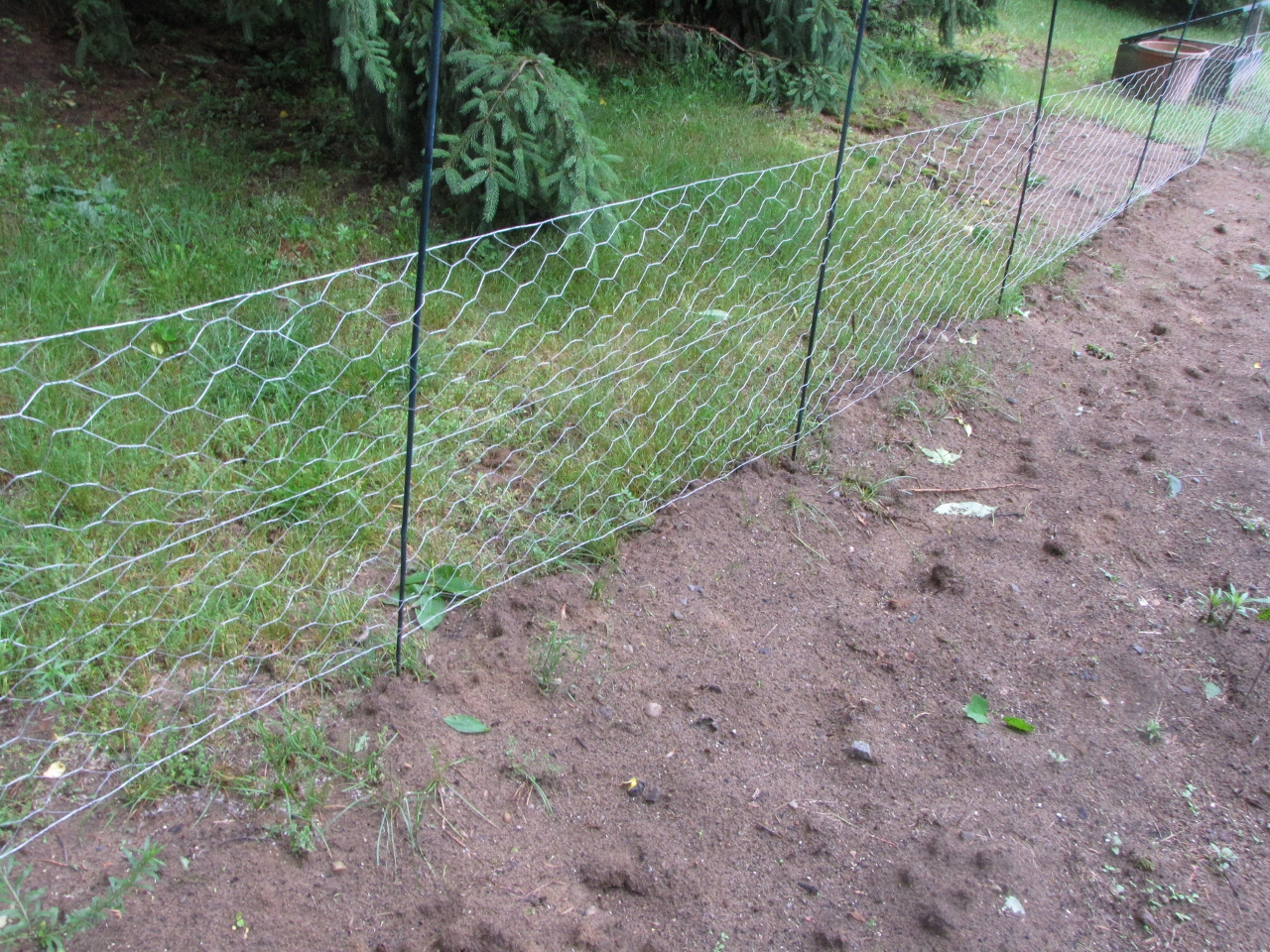 Chicken Wire but no Chickens aka Our Garden Plan Kimversations