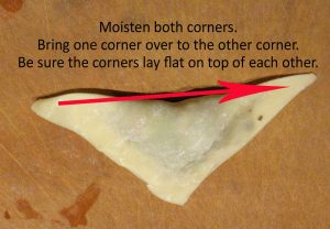 how to make a pot sticker