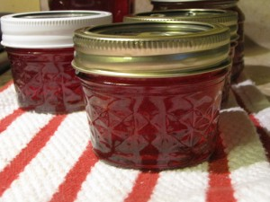 Crab Apple Jelly - jars