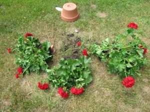 window box planters and drilling holes
