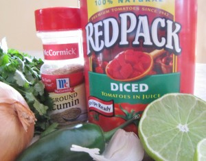 Salsa - ingredients (1280x1006)