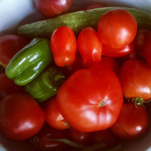 Todays harvest  tomatoes peppers cucumber and a few stringhellip